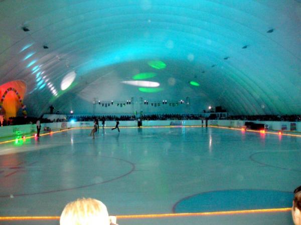 palouse ice rink business plan